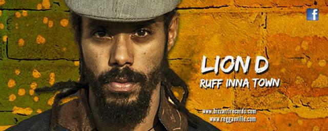 lion d banner video