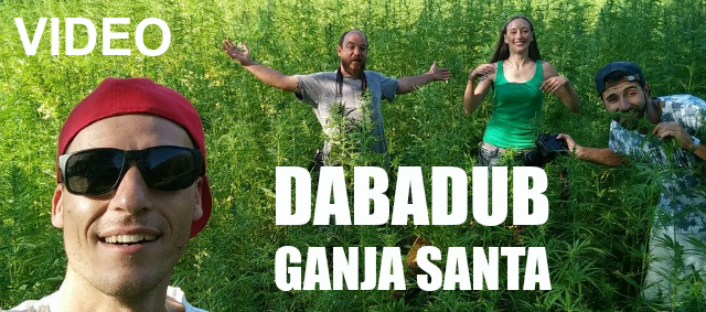Ganja Santa banner